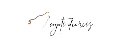 shop.coyotediaries.com